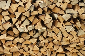 Burning hardwood vs softwood logs – what's best for you?