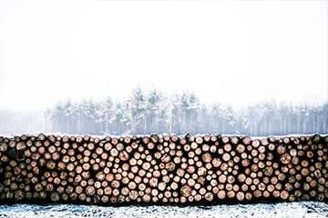 Storing logs outside over winter: effective tips to consider