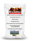 Brackenburn Brackettes